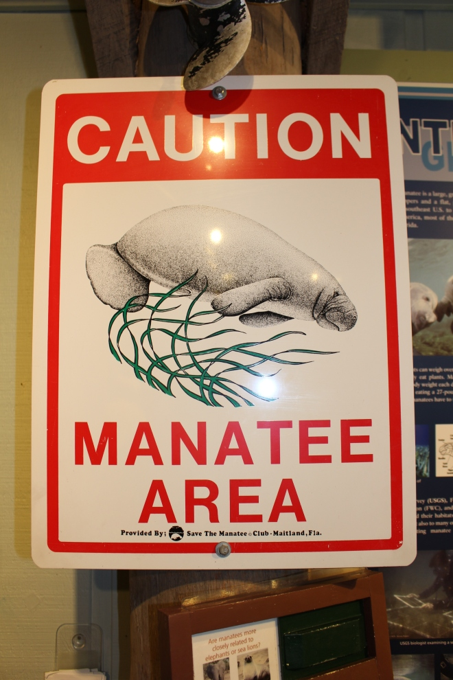 Manatee Area